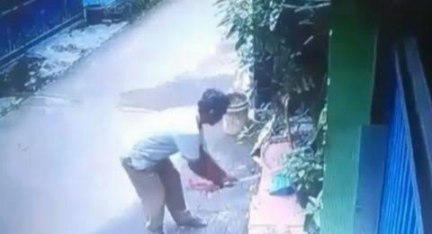Berkas Kasus Pria Pemukul Kucing Sampai Mati Dilimpahkan ke Pengadilan